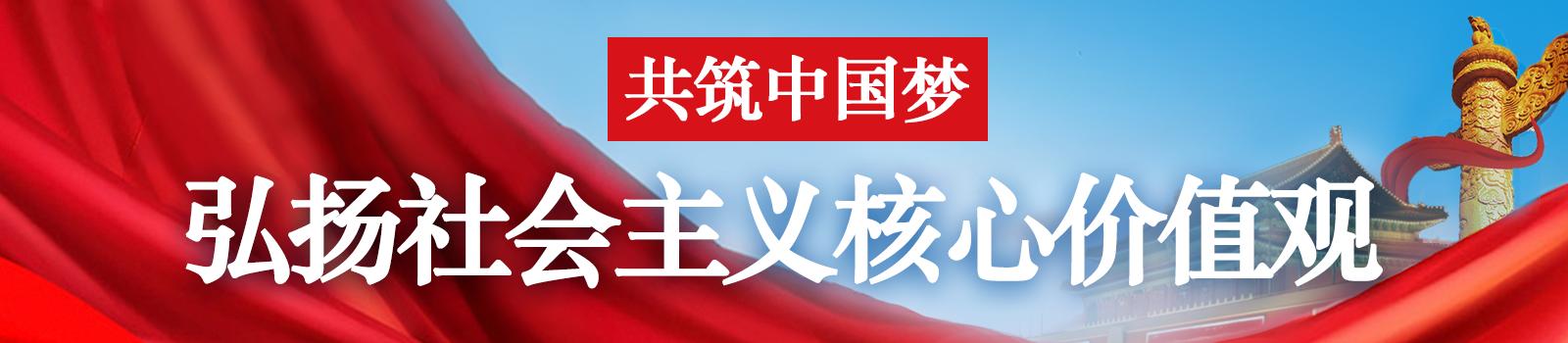 弘扬社会主义核心价值观 共筑中国梦 主题视频展播 --西藏局