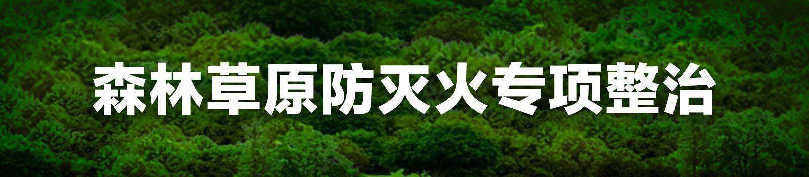 四川:推进森林草原防灭火专项整治